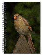 One Leg Spiral Notebook