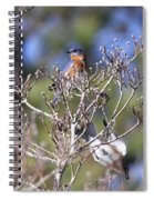 One More Berry Spiral Notebook