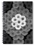 One Red Flower Spiral Notebook