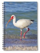 One Step At A Time Spiral Notebook