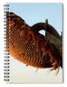 One Sunflower Head Wilted Spiral Notebook
