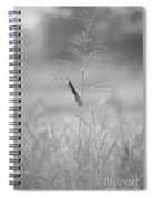 One Tall Blade Of Grass On A Foggy Morn - Bw Spiral Notebook