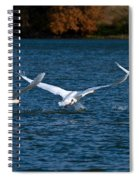 One Two Three Go Spiral Notebook