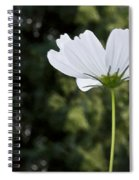 One Wildflower Spiral Notebook