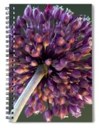 Onion Flower Spiral Notebook