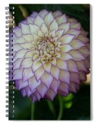 Open For Pleasure Spiral Notebook