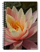 Open To Possibilities Spiral Notebook