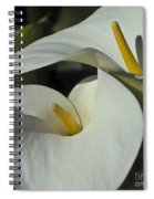 Open White Calla Lily Spiral Notebook