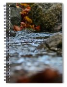 Opposite Shore Spiral Notebook