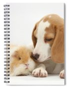 Orange-and-white Beagle Pup And Alpaca Spiral Notebook