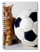 Orange And White Kitten With Soccor Ball Spiral Notebook