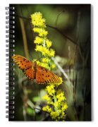 Orange Butterfly On Yellow Wildflower Spiral Notebook