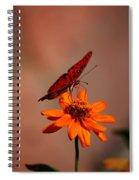 Orange Butterfly Orange Flower Spiral Notebook