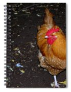 Orange Chicken Spiral Notebook