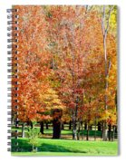 Orange Colored Trees Spiral Notebook