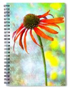 Orange Coneflower On Green And Yellow Spiral Notebook