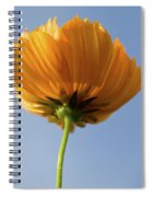 Orange Cosmos Too Spiral Notebook