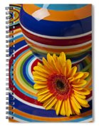 Orange Daisy With Plate And Vase Spiral Notebook
