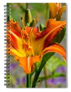 Orange Day Lily Spiral Notebook