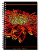Orange Gerbera Daisy With Chrome Effect Spiral Notebook