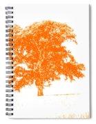 Orange Oak Spiral Notebook