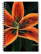 Orange Oriental Lily Spiral Notebook