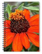 Orange Petals Spiral Notebook