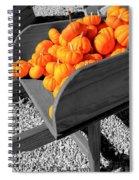 Orange Pumpkin Harvest Spiral Notebook