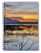 Orange Reflections Spiral Notebook