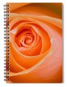 Orange Rose Spiral Notebook