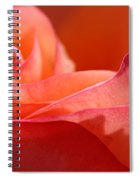 Orange Sensation Spiral Notebook