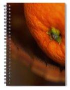 Orange Sunshine Spiral Notebook