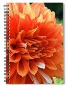 Orange Vanilla Dahlia Spiral Notebook