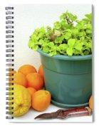 Oranges And Vase Spiral Notebook