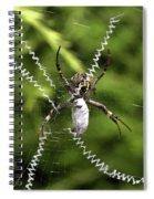 Orb Weaver Spiral Notebook