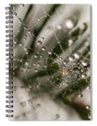 Orbiting The Web Spiral Notebook