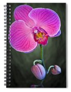 Orchid And Buds Spiral Notebook