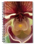 Orchid Interior Spiral Notebook