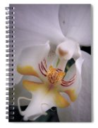 Orchid Close Up Two Spiral Notebook