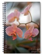 Orchid Gathering Spiral Notebook