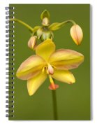 Orchid Number 1 Spiral Notebook