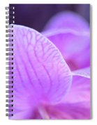 Orchid Pink Spiral Notebook