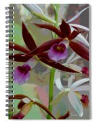 Orchid Sonata Spiral Notebook