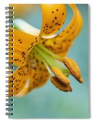 Oregon, United States Of America A Lily Spiral Notebook