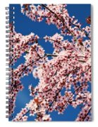 Oregon, United States Of America Cherry Spiral Notebook
