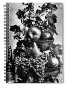Oregon: Wine & Grapes Spiral Notebook
