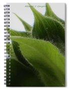 Ornamental Calyx Spiral Notebook
