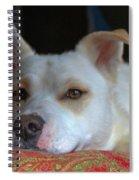 Orvis 0242 Spiral Notebook