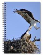 Osprey Coming In For A Landing Spiral Notebook