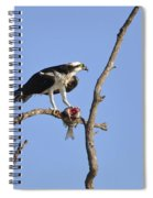 Osprey With Catch II Spiral Notebook